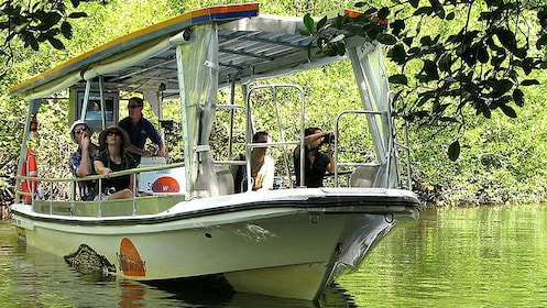 Boat sailing with guests onboard on the Daintree River cruise in Australia