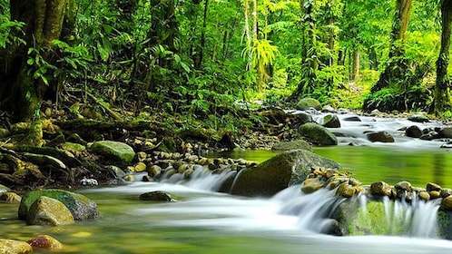 Beautiful Mossman Gorge in Australia
