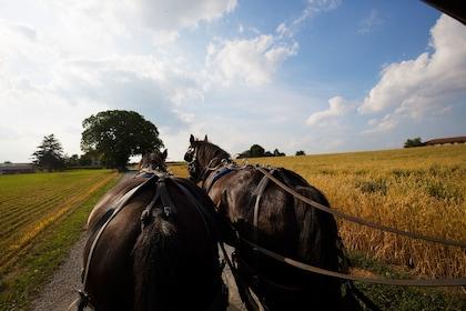 Overnight Washington D.C., Philadelphia & Amish Country Tour