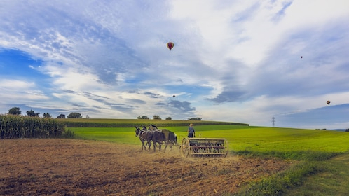 Amish farmer plowing the fields with hot air balloons overhead in Pennsylvania