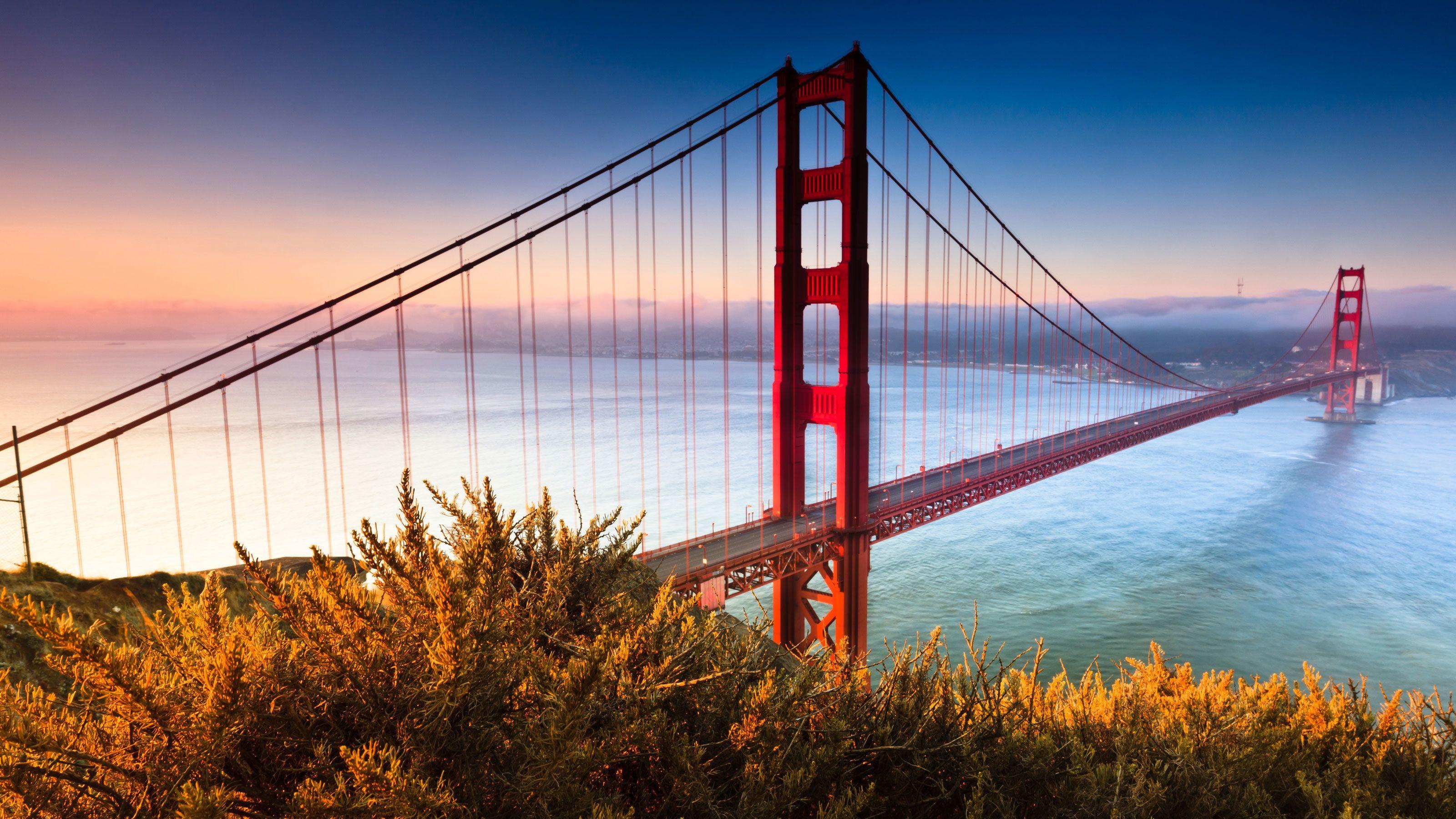 San Francisco's Golden Gate Bridge.