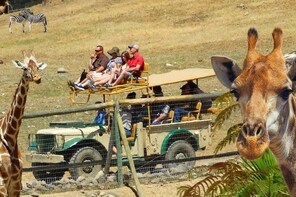 Discover Sonoma Wild Safari Animal Park and Visit Napa / Sonoma Redwoods