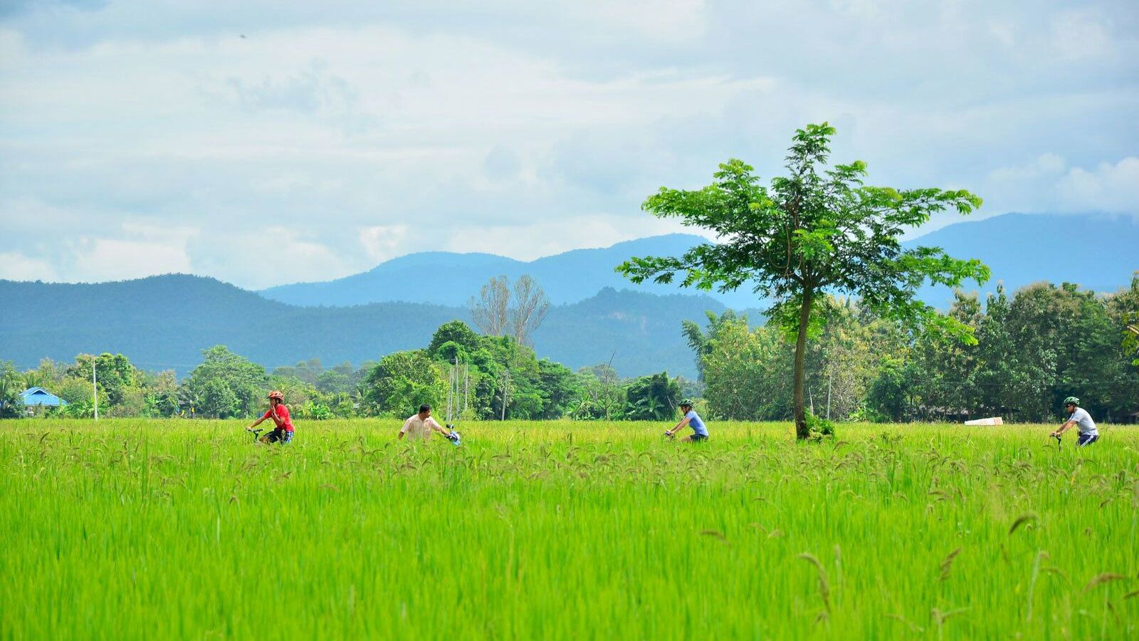 Sankampaeng Countryside Cycling Tour with Hot Springs