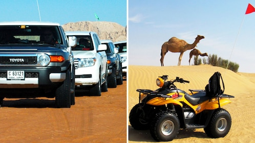 Combo image of 4x4 Desert Adventure and ATV Experience