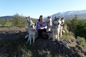 Hiking with Husky in Akureyri