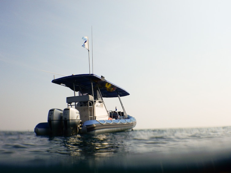 Show item 5 of 10. Popes Eye Marine Park Guided Snorkelling Boat Tour