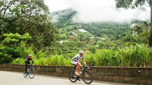 Two bicyclist riding up hillside in Thailand