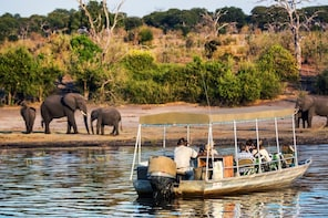 Chobe Full Day Tour (From Victoria Falls)