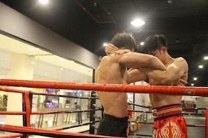 Professional Muay Thai class with ED Visa Khon Kaen