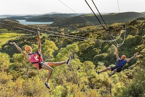 Flying Fox Ziplines auf Waiheke Island