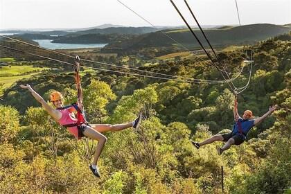 Flying Fox Ziplines at Waiheke Island