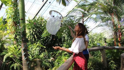 Rainforestation Nature Park, Butterfly Sanctuary & Kuranda Village