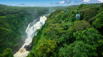 Classic Kuranda Tour with Rainforestation Nature Park