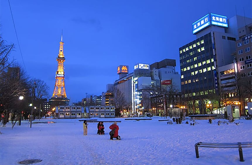 Show item 3 of 5. Sapporo TV Tower Observation Deck Ticket