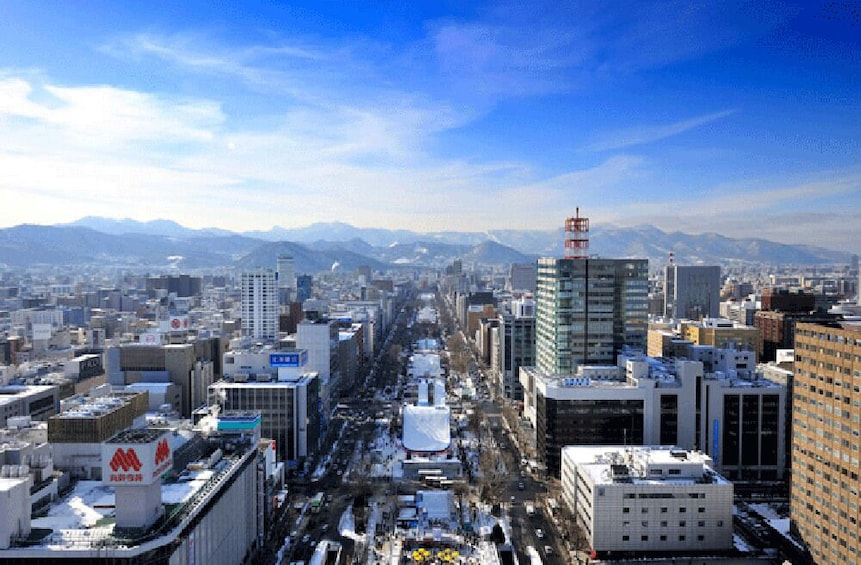 Show item 5 of 5. Sapporo TV Tower Observation Deck Ticket