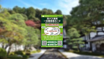 Kyoto Bus 1-Day Pass (Japan Pick-Up)