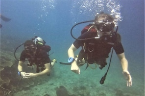 PADI Discover Scuba Dive Experience