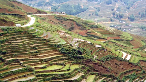 stepped rice paddies along a hill in Hanoi