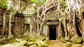 Angkor Temples Private Small-Group Tour