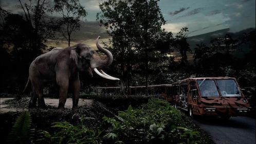Elephant next to edge of habit raising trunk to approaching vehicle