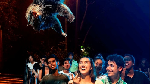 Audience watching a projection of an animal floating over them at the Night Safari in Singapore