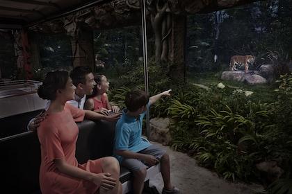 Skip-the-Line: Night Safari Ticket with Transfer