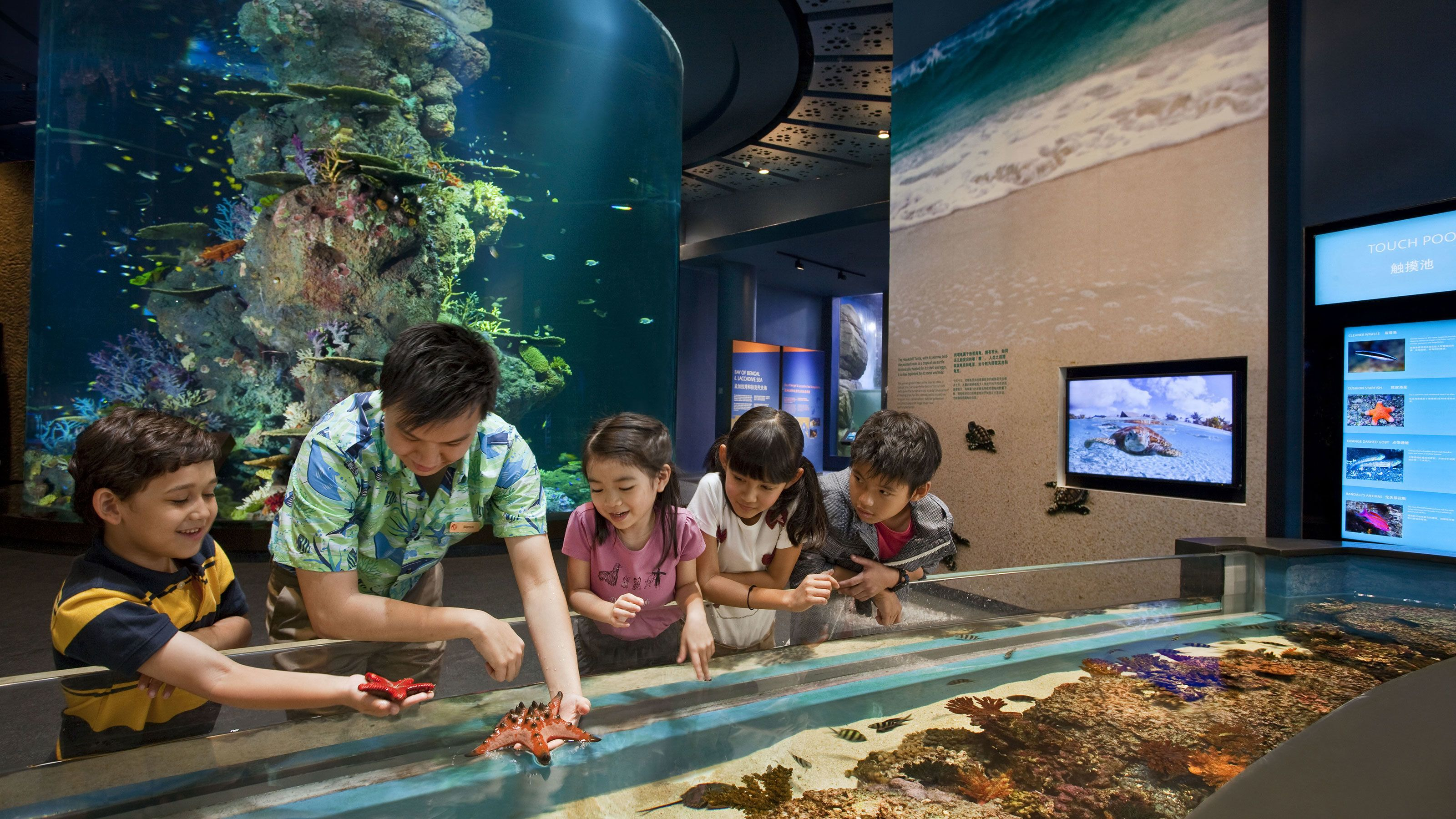Adult with four kids at the touch pool at the SEA Aquarium in Singapore