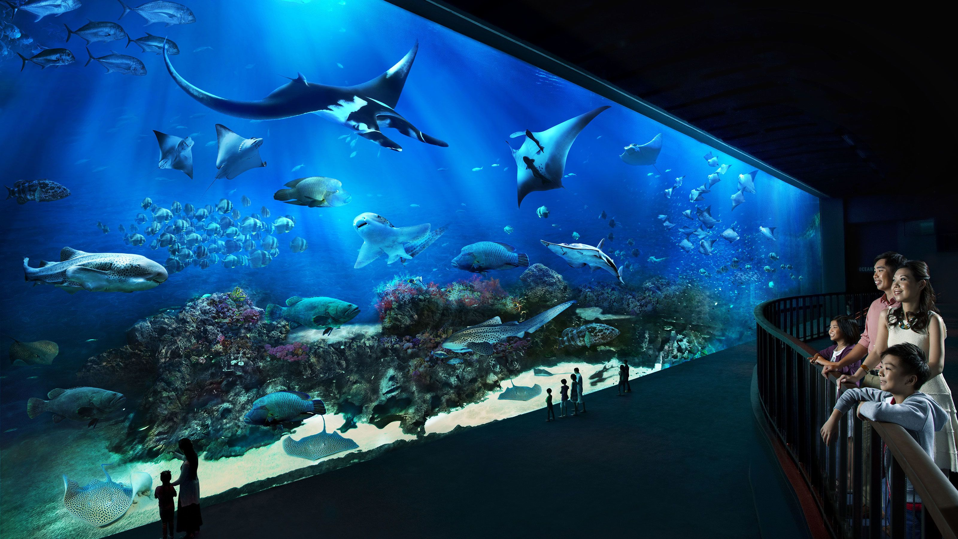 Family looking a huge fish tank from balcony at the SEA Aquarium in Singapore