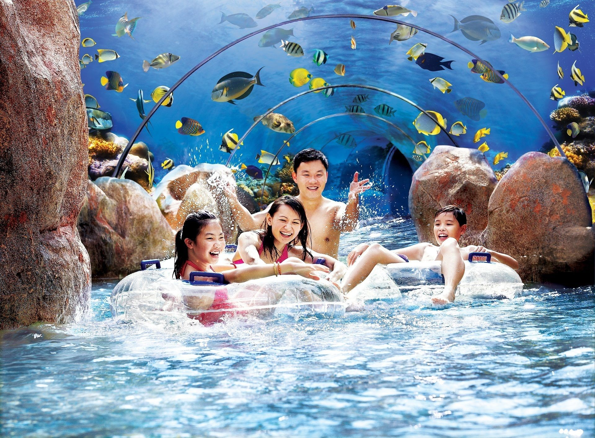 Adventure River Surround Aquarium_MR.jpg