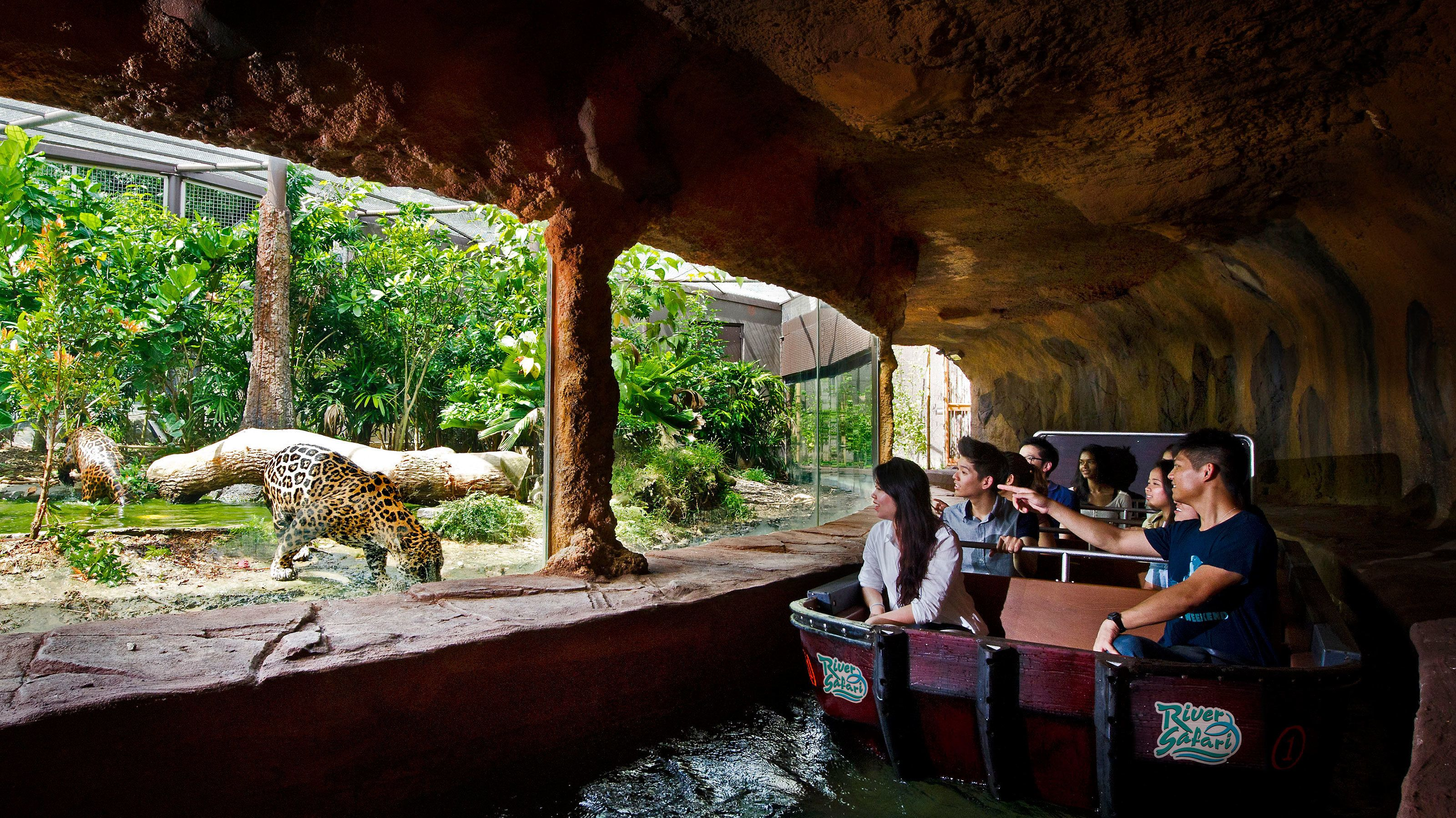 River Safari Ticket with Transfer
