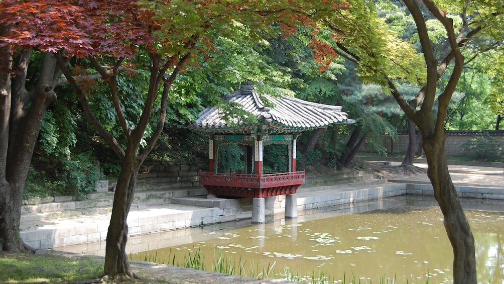 Show item 5 of 5. Palace garden in Seoul