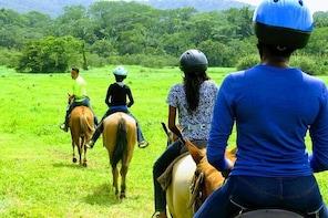 Belize HorseBack Tower Ride & River Tubing