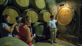 Private Wein-Tagestour nach Arrábida