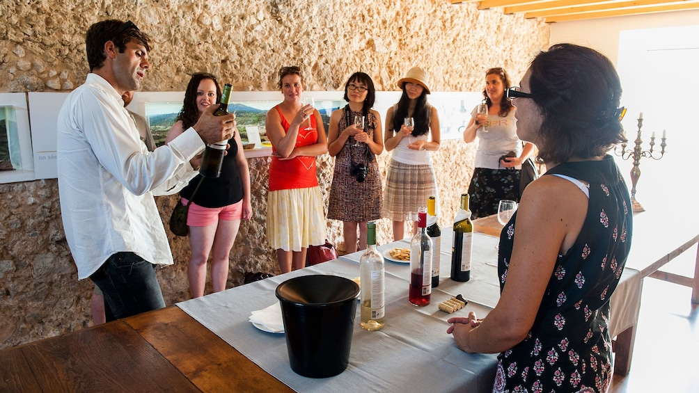 Apri foto 5 di 5. group participating in wine tasting in Portugal