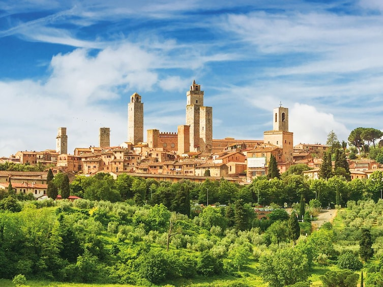 Show item 4 of 10. Tuscany in 1 day: Pisa, San Gimignano and Siena with Lunch