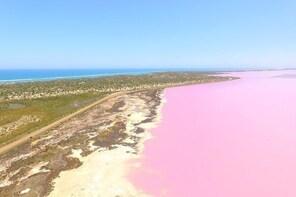 Pink Lake + Abrolhos Islands Scenic Flight
