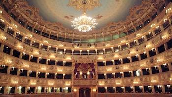 Visita al Teatro de La Fenice