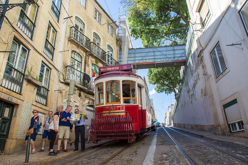 Hop-On Hop-Off Bus & Tramcar Tours