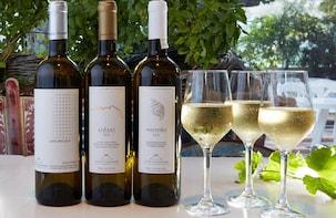 Wine of the Island-Tour in kleiner Gruppe