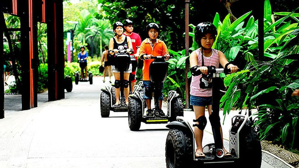 Show item 3 of 5. group on segways on tropical path in singapore