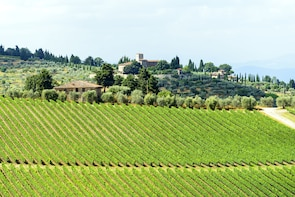 Best of Chianti Tour with Wine Tastings and Tuscan Dinner