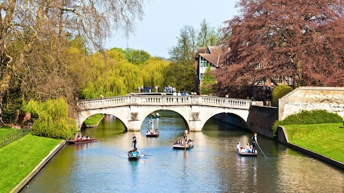 people rowing boats on river in Cambridge, London