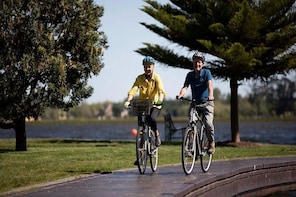 Electric Bicycle Hire