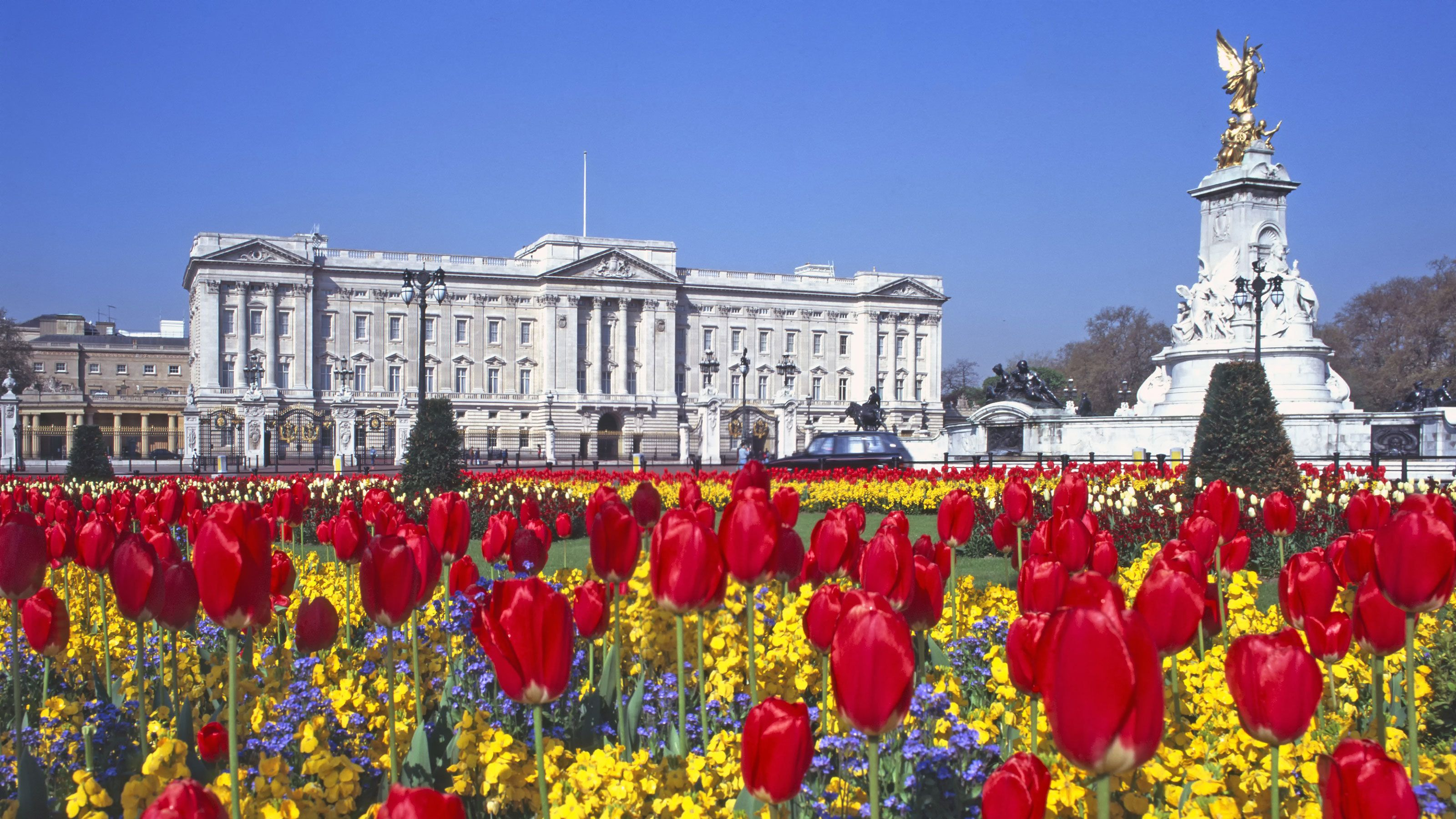 Royal flower gardens in front of Buckingham Palace in London