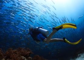 Tunku Abdul Rahman Island Visit & Boat Snorkelling Experience