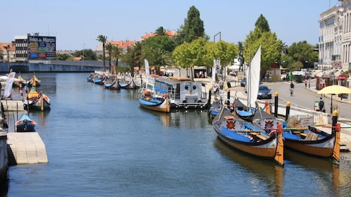 Boats line the banks of the canal in Aveiro