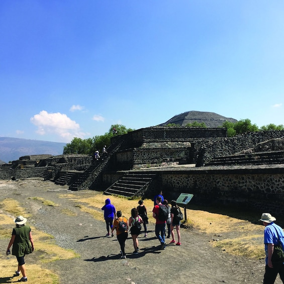 Cargar foto 10 de 10. Teotihuacan with a Private Archeologist and liquors tasting