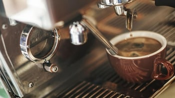 Qingdao Coffee & Culture Day Tour