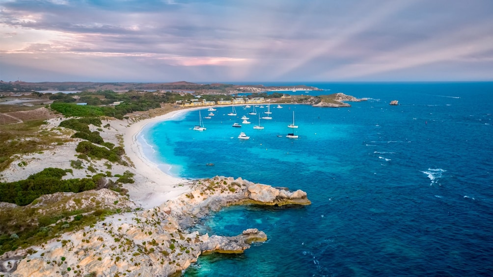 Show item 3 of 6. Discover Rottnest Island Day Tour from Perth & Fremantle