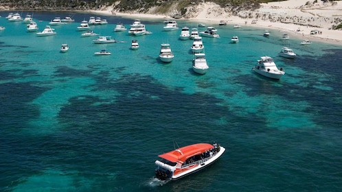 Many boats anchored near the beach on Rottnest Island